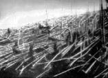 Co před více než sto lety způsobilo dodnes záhadnou událost uprostřed Sibiře? Nevydařený experiment, výbuch nebo havárii UFO?