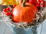 Podzimní dekorace nejsou jen věnce. Vystačíte si i s obyčejným kyblíčkem